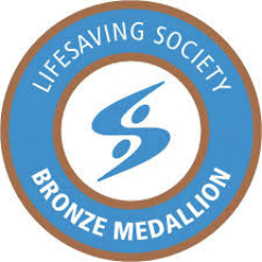 BronzeMedallion small