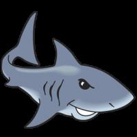 Shark982px